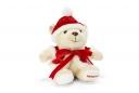 11-12秋冬 限定 中 クリスマス